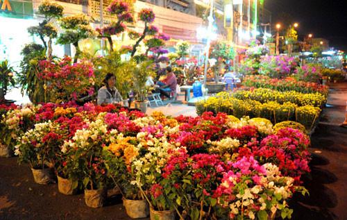 Chợ hoa xuân ninh kiều - Đại Phú Vinh